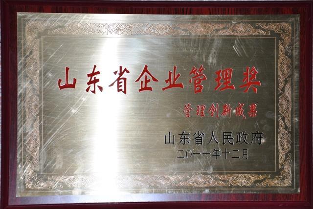 山东省企业管理创新成果奖