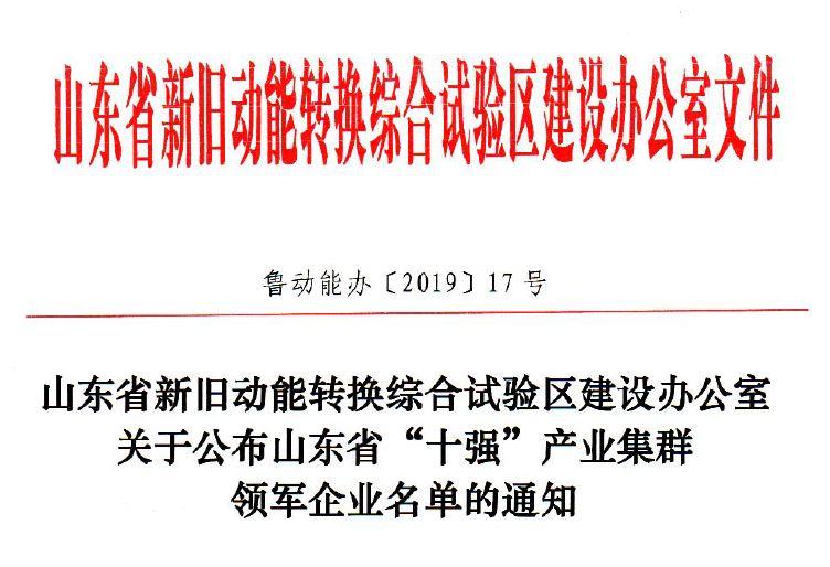 """山东省""""十强""""产业集群领军企业"""