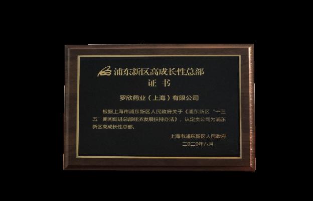 浦东新区高成长性总部